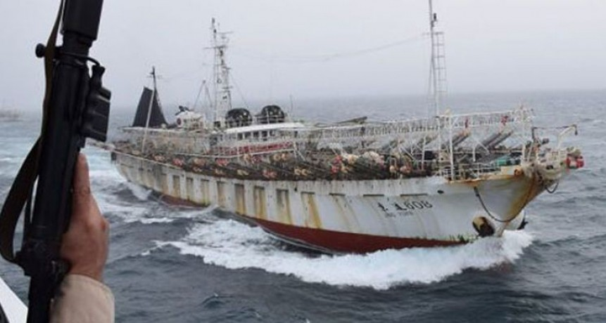 Pesca ilegal, el Gobierno trabaja para evitar y neutralizar.