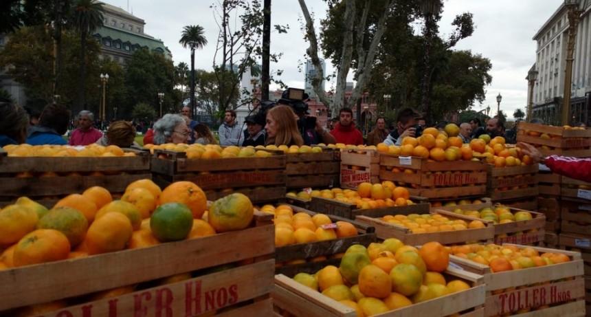 """Empezó el """"frutazo""""  en Plaza de Mayo"""